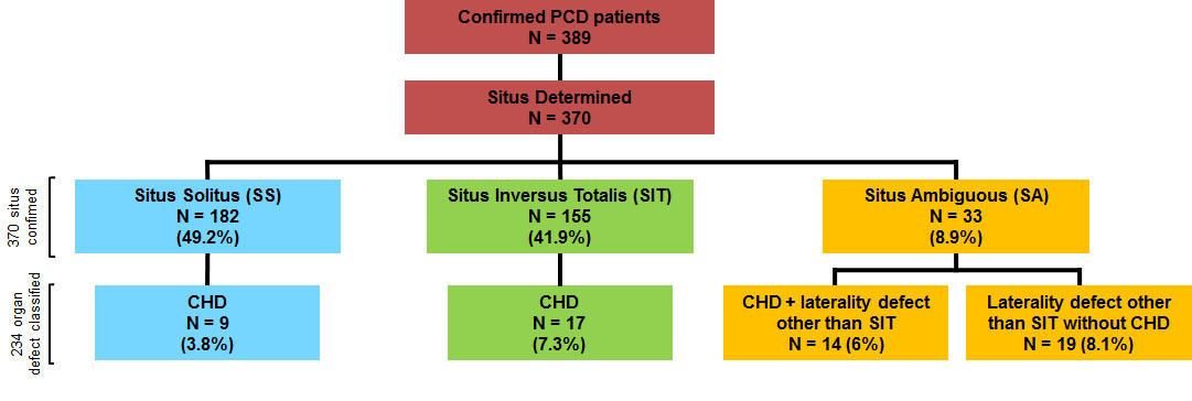 Risk factors for situs defects and congenital heart disease